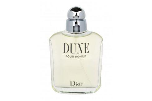Christian Dior Dune Pour Homme 100 ml toaletní voda pro muže Toaletní vody